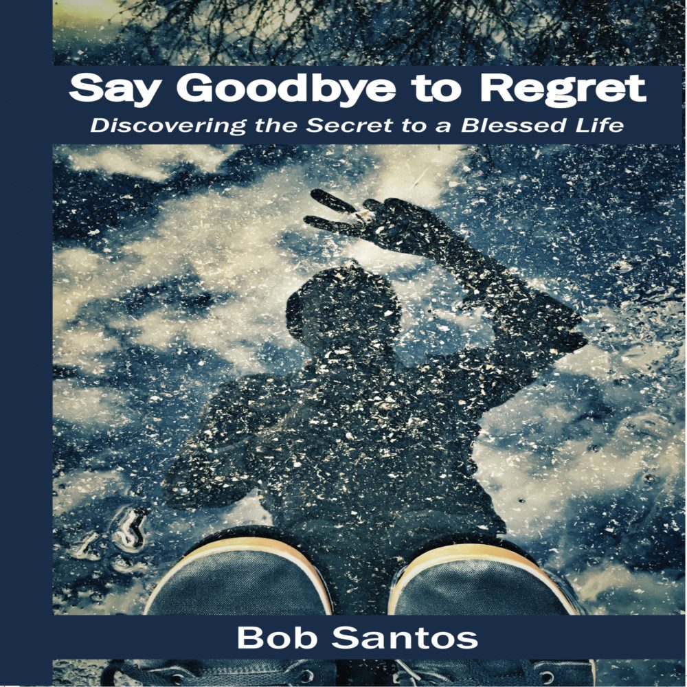 Say Goodbye to Regret Cover
